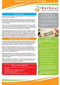 Wellbeing Employee Factsheet